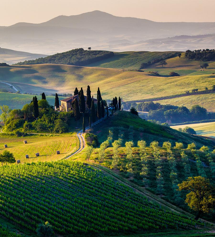 Excursiones Toscana y la Playa de Napoleón