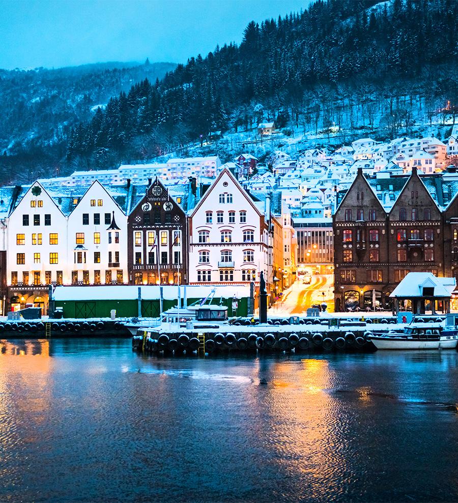 Excursión Bergen Panorámico
