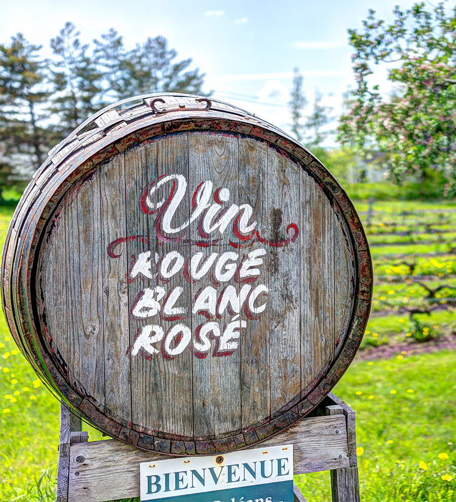Excursión Quebec, Costa de Beaupre, St. Anne Cayon y Viñedo